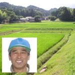 有機JAS認定ちから米