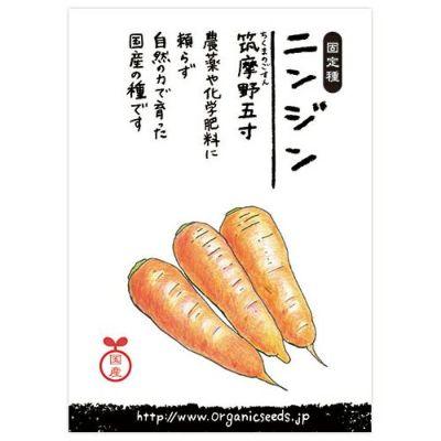 国産・自然農法種子 ニンジン(筑摩野五寸) 約880粒